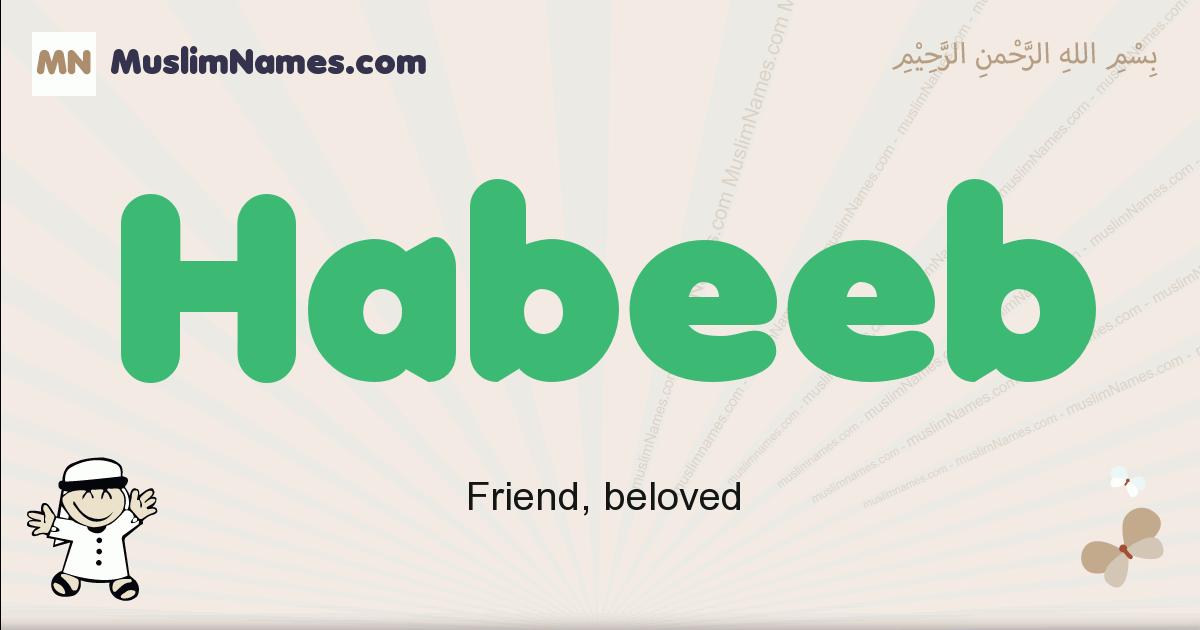 Habeeb muslim boys name and meaning, islamic boys name Habeeb