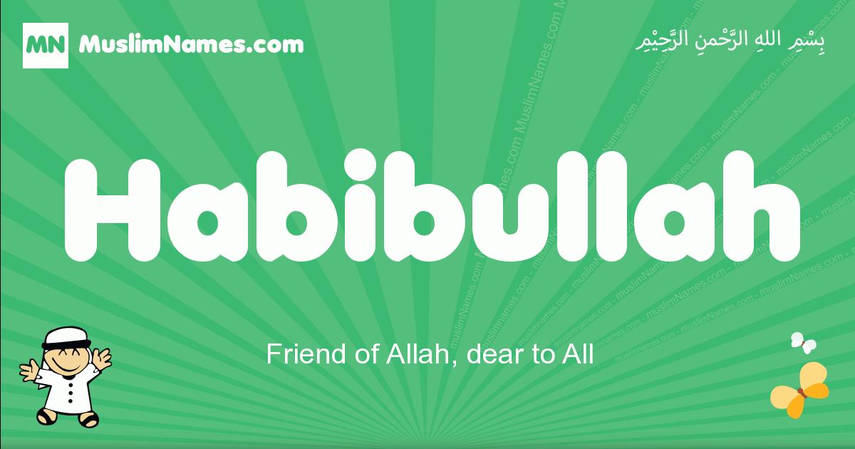 habibullah arabic boys name and meaning, quranic boys name habibullah