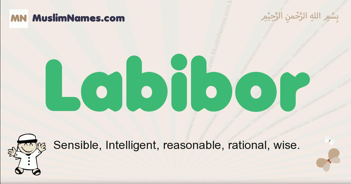 Labibor muslim boys name and meaning, islamic boys name Labibor
