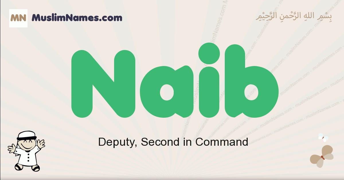 Naib muslim boys name and meaning, islamic boys name Naib