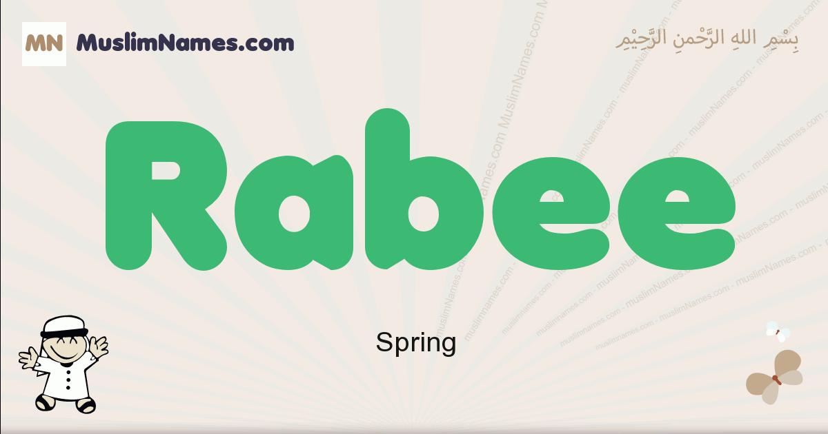 Rabee muslim boys name and meaning, islamic boys name Rabee