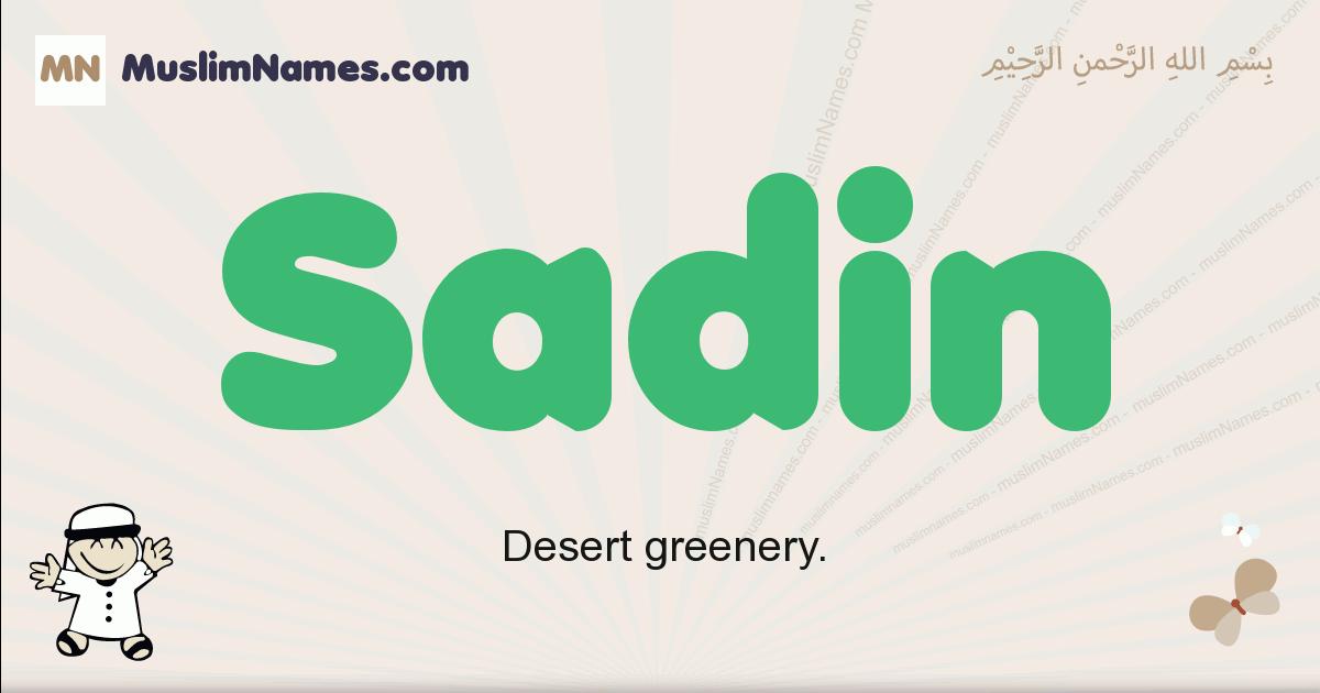 Sadin muslim boys name and meaning, islamic boys name Sadin