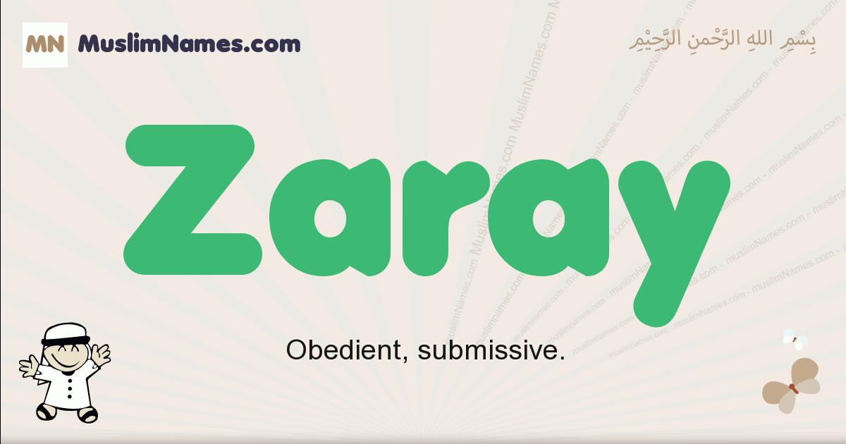 Zaray muslim boys name and meaning, islamic boys name Zaray
